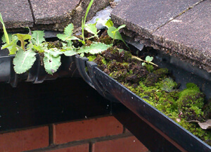 Gutter cleaning and restoration to prevent damp problems.